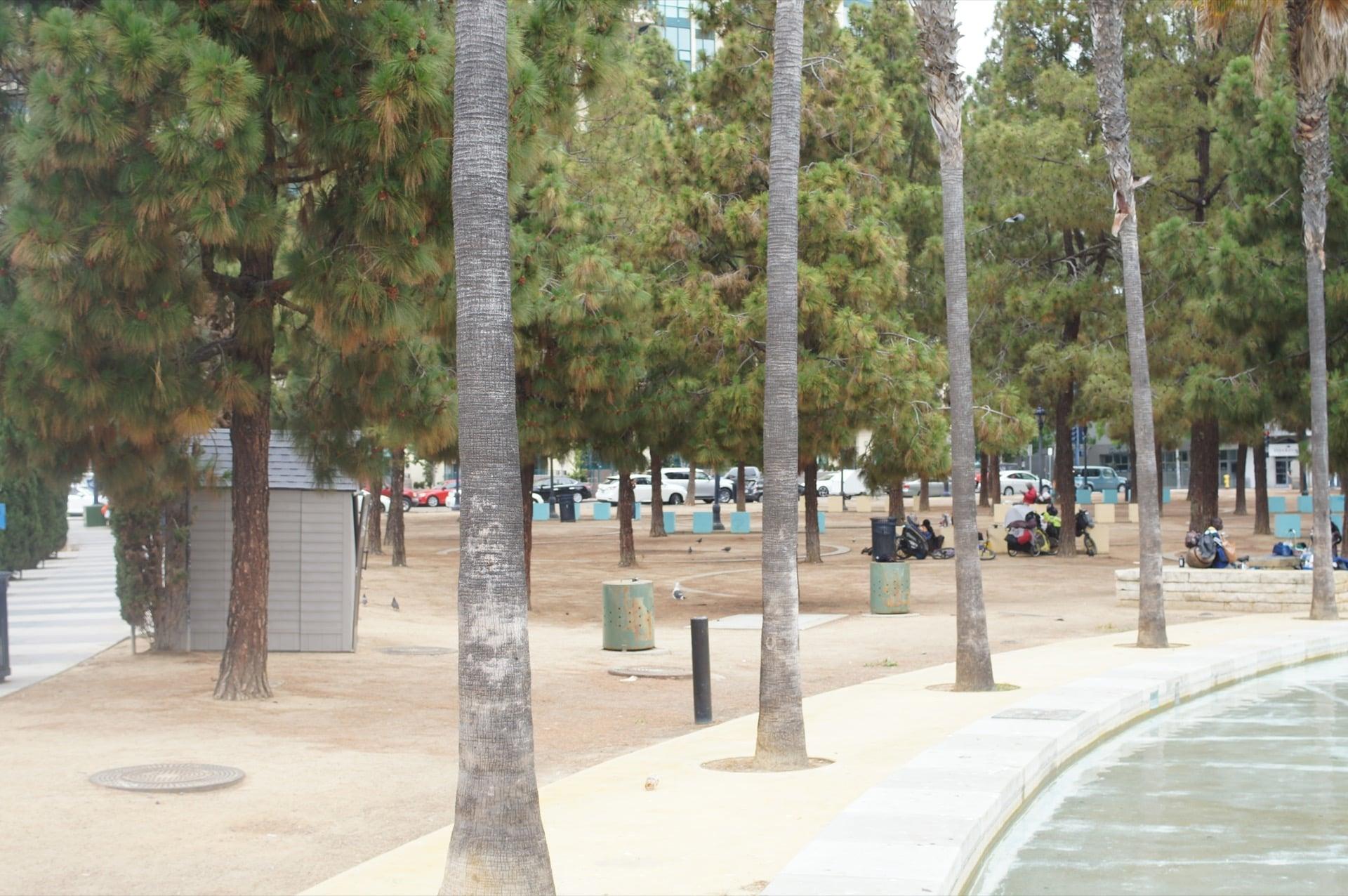 City of San Diego Paid Millions on Sidewalk Injuries in 2018
