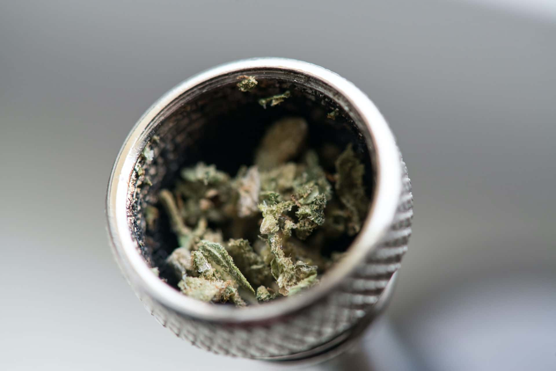 Everything You Need to Know Before This Year's Vote on Marijuana Legalization